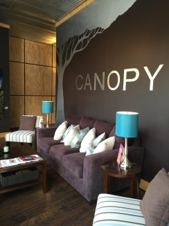 Canopy an Aveda Salon