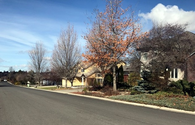 Moscow Idaho real estate Moser1 2